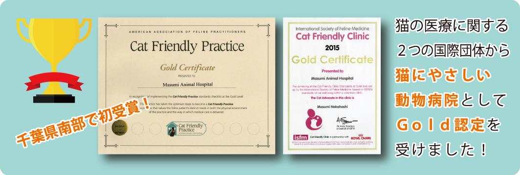 猫にやさしい動物病院GOLD(ゴールド)認定を取得