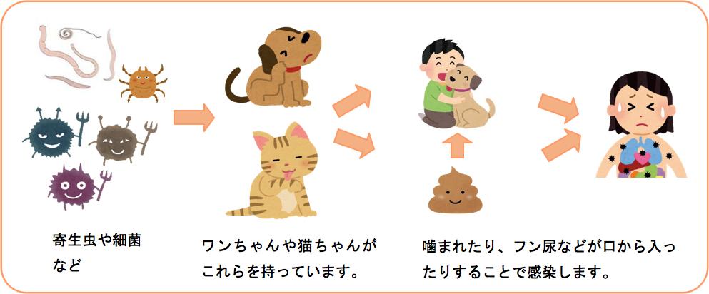 ペット感染症