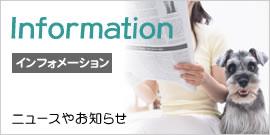 catch_info