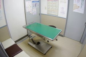 ますみ犬猫病院 診察室